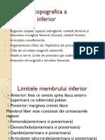 Anatomia Topografica a Membrului Inferior294714762