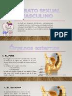 parte2.pptx