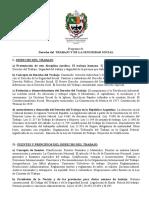 15 La Inconstitucionalidad Del Contrato Administrativo de Servicios