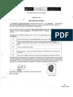 Cv. PDF