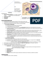 Sistema de Endomembranas