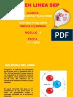 Merazizaguirre Natalia M14S1 Materia Organizada