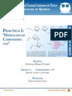 p1-Hidrolisis de Carbohidratos
