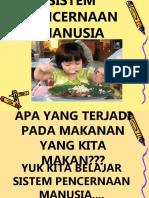PRESENTASI-SISTEM-PENCERNAAN-MANUSIA (1).ppt