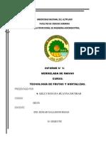 151179961-Mermelada-Mango-INFORME.docx