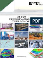 Geological & Petroleum Geoscientific Course Catalogue- Dimension Strata Brunei