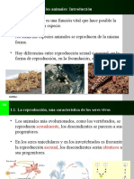 tema04lareproduccindelosanimales-121112061109-phpapp02