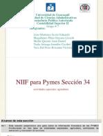 Documento Niff Para Pymes Seccion 34