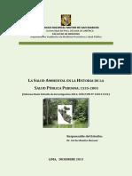1. LIBRO SALUD AMBIENTAL.pdf