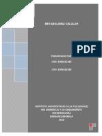 167219715-Monografia-de-Metabolismo-Celular-2.pdf