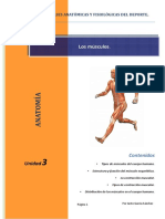 Los músculos.pdf