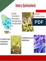Infografía Fotosíntesis y Quimiosintesis.pptx