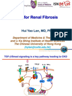 1 Smad3 for Renal Fibrosis-IsN Nuxes-2014smallpdf.com (1)
