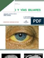 Higado y Vias Biliares-2018