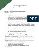 rpp 8