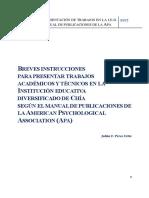INSTRUCTIVO  APA 2017.pdf