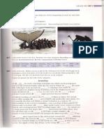 Scanare_20181115 (38).pdf