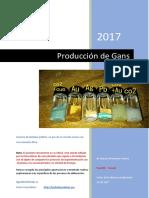 alquimia - relatorio completo gans em espanhol