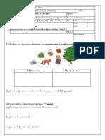 Examen BG 1º ESO Tema 1.1