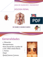 Fisiologia Clase 9 y 10 Renal