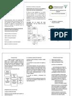 TRIPTICO-flujo de caja economico y financiero.docx