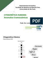 Anomalias Cromossomicas2014