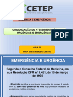 AULA 1 - URGÊNCIA ERINALDO.pdf