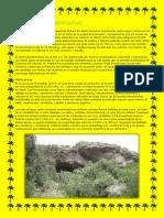 Historia de Pikimachay