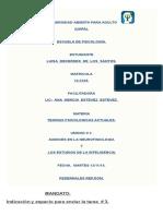UNIVERSIDAD ABIERTA PARA ADULTO.docx