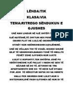 MARIOSSIGN TEKNOLOGJIA.docx