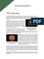 DISENOS_Y_MOTIVOS_ICONOGRAFICOS_EN_LOS_S.pdf