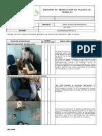 Inspeccion Ergonomica Modelo de Informe