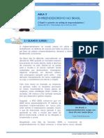 UVA 2 Aula 2 - Empreendedorismo No Brasil