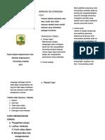 Leaflet Cemas