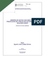 PFC_DSIC-80_AgustínCalleja.pdf