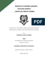 T14338 GARCÍA ANDRÉS, FERNANDO   TESIS.pdf