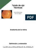 Fondo de Ojo, Anatomía de La Retina