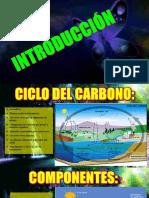 Carbono - Copia
