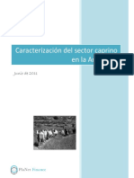SectorCaprino_Argentina.pdf