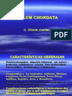 CORDADOS2013a.pdf