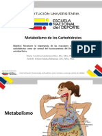 Metabolismo_de_carbohidratos(2) (1)