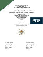 Executive Summary Report MRP