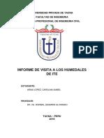 Informe Visita Humedales de Ite