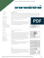 Comunidade Da Construção - Revestimento de Argamassa - Características