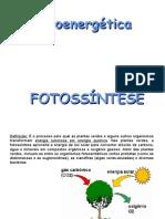 Biologia PPT - Botânica - Fotossíntese