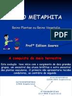 Biologia PPT - Botânica - Reino Metaphita