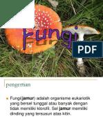 Fungi Untuk D3