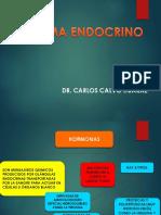 Sistema Endocrino-telesup (1)