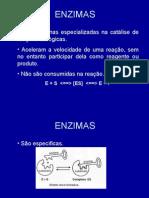 Biologia PPT - Enzimas II