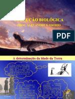 Biologia PPT - Evolução Bioloógica